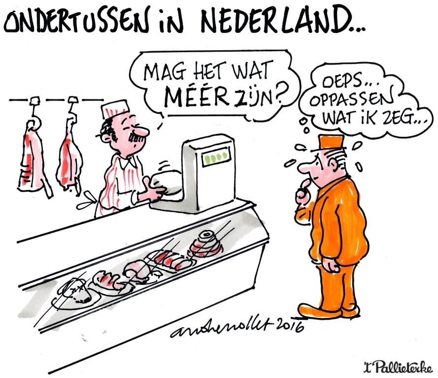 rechtszaal in nederland