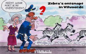 2015-17_06_Dwars door Vlaanderen (Medium)